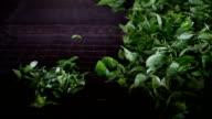 Ceylon tea factory video