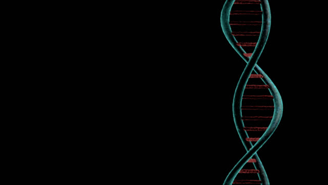 Chain of DNA gyrating on black background video