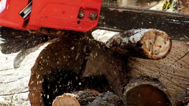 Chainsaw Cutting Log In Detail Shot video