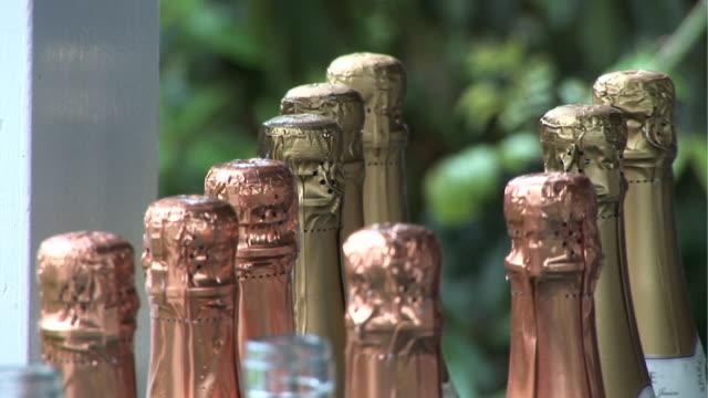 Champagne Bottles - HD & PAL video