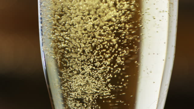 Champagne Bubbles in Glass - High Speed Video video
