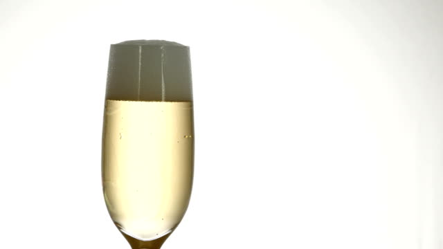 champagne glass isolated video