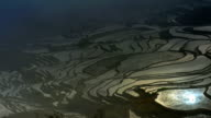 Changing sunlight on the terraced fields video