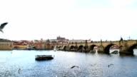 Charles bridge and Vltava river in Prague video