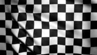 Checkered Flag Close-up. video
