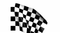 Checkered Flag in Wind video
