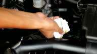 Checking the car lubricant oil level. video