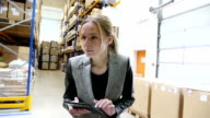Checking the inventory in warehouse video