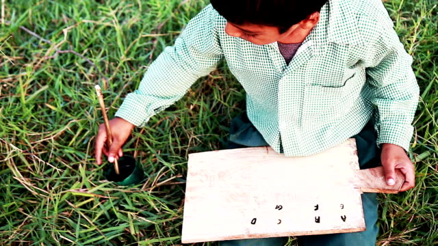Cheerful Boy Sitting in the Field and Studying Outdoor Portrait video