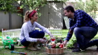 HD: Cheerful Couple Gardening in vegetable garden. video