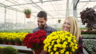 Cheerful couple in greenhouse video