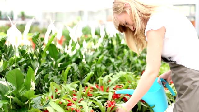 HD: Cheerful Female Florist Watering Flowers. video