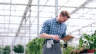 Cheerful florist with tablet in greenhouse video