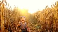 SLO MO Cheerful little boy among wheat ears video