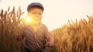 SLO MO Cheerful little boy running among wheat ears video