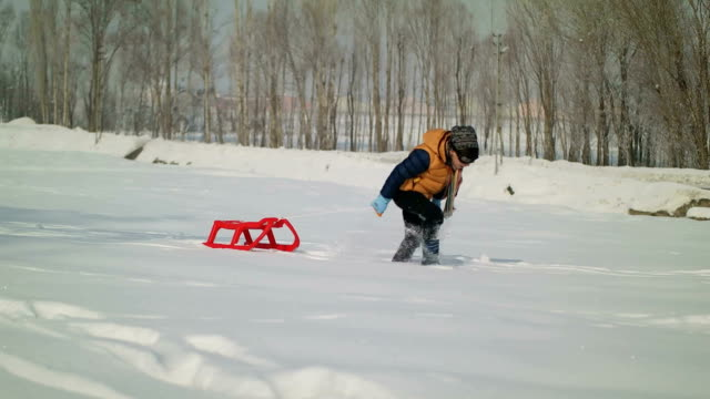 Cheerful sledding and having fun on snow video