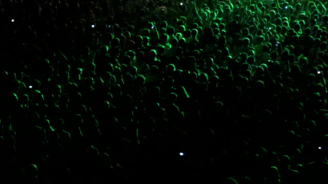 Cheering crowd in a concert hall video
