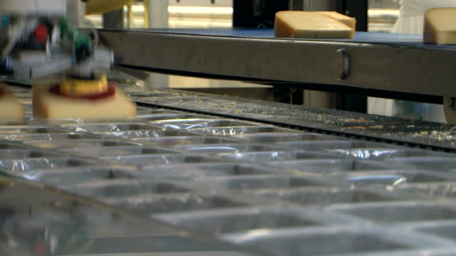 Cheese food industry packaging Assembly Line, Closeup video