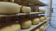 Cheese Wheels video