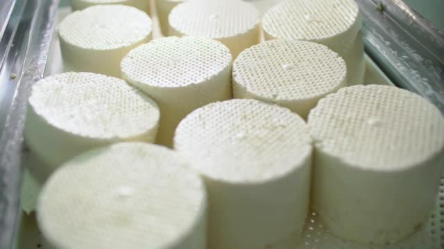 Cheesemaker preparing fresh cheese video