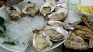 Chef puts on the ice open fresh oysters. Close Up. video