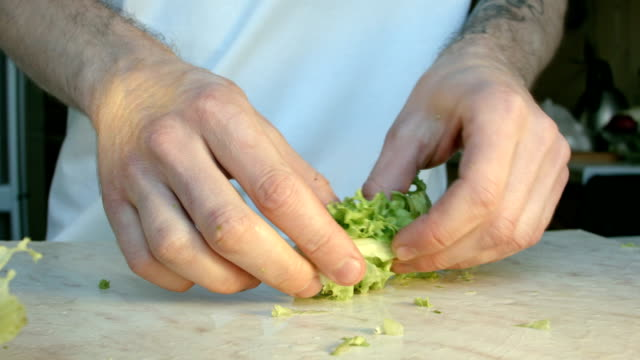 Chefs hands cutting a fresh green salad leaf. video