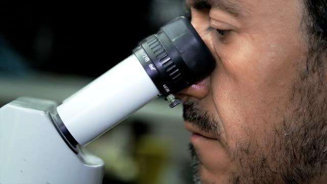 Chemist using microscope video