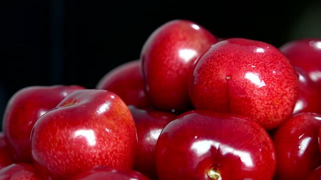 Cherry basket / Sweet cherry background video