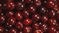 TOP VIEW: Cherry berries are rotating video