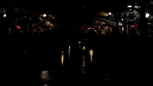 Cherry blossom night version wide shot at Nakameguro river video