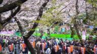 Cherry blossoms festival in Ueno Park Tokyo video