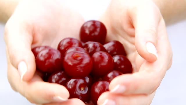 Cherry fruits in hands. video