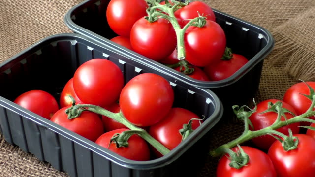 Cherry tomatoes in a plastic container on brown background video