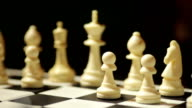 Chess board with white pieces video