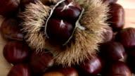 Chestnut video