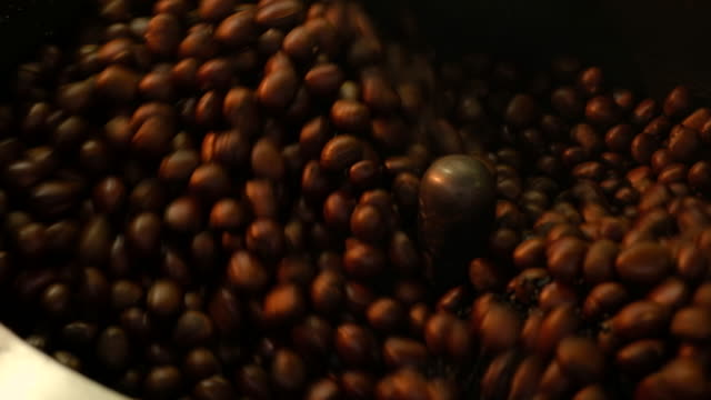 Chestnuts in Chestnut roasting machine video
