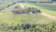 Chianti, Italian wine and vineyard in rural landscape, Tuscany, Italy video