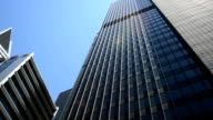 Chicago Downtown Buildings video