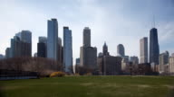 Chicago Skyline and Park video