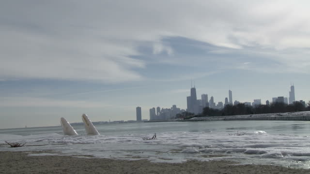 Chicago Winter Lake video