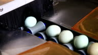 chicken egg selection in the factory video