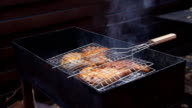 Chiken meat on barbeque grill video