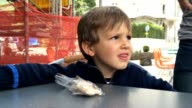 Child confused and annoyed with comment video