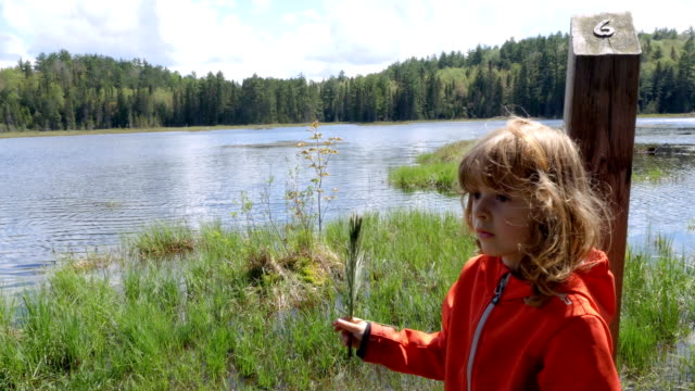 Child Holding Pine Needles in Front of a River video