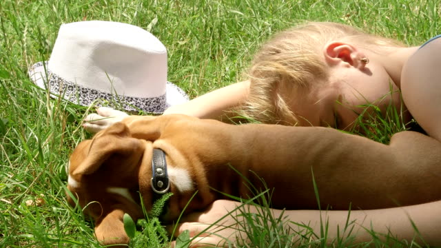 Child with puppy dreaming on grass in summer day video