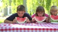 Children eating watermelon outside video