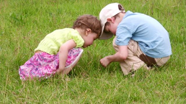 Children explore bug 2 video