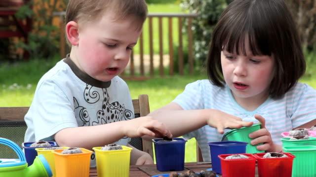 Children gardening planting seeds video