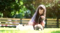 Children girl feed her little rabbit video