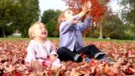 Children having fun in autumn park video